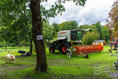 Landwirtschaftliche Maschine - Arminiuspark Landesgartenschau 2017 Bad Lippspringe