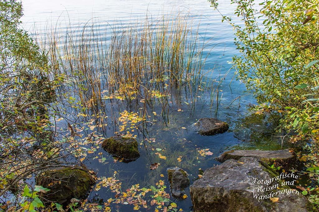Rund um den Laacher See (55)