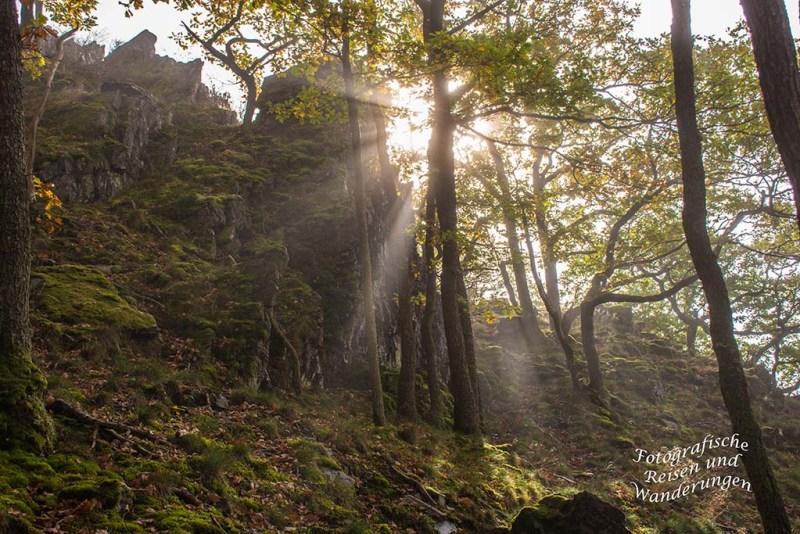 Felsen im Herbstwald auf dem Mosel- Seitensprung Graf-Georg-Johannes Weg