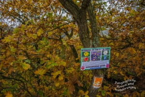 Infoschild Flora-Fauna